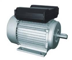 YL单相双值电容异步电动机