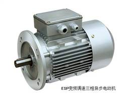 ESP frequency control of motor speed three phase asynchronous motor
